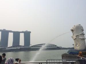 自然豊かで大満足だったシンガポール旅行