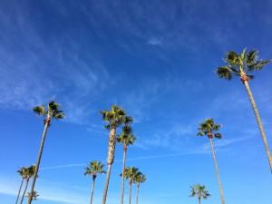 年末年始をアメリカ、ロサンゼルスで過ごす旅